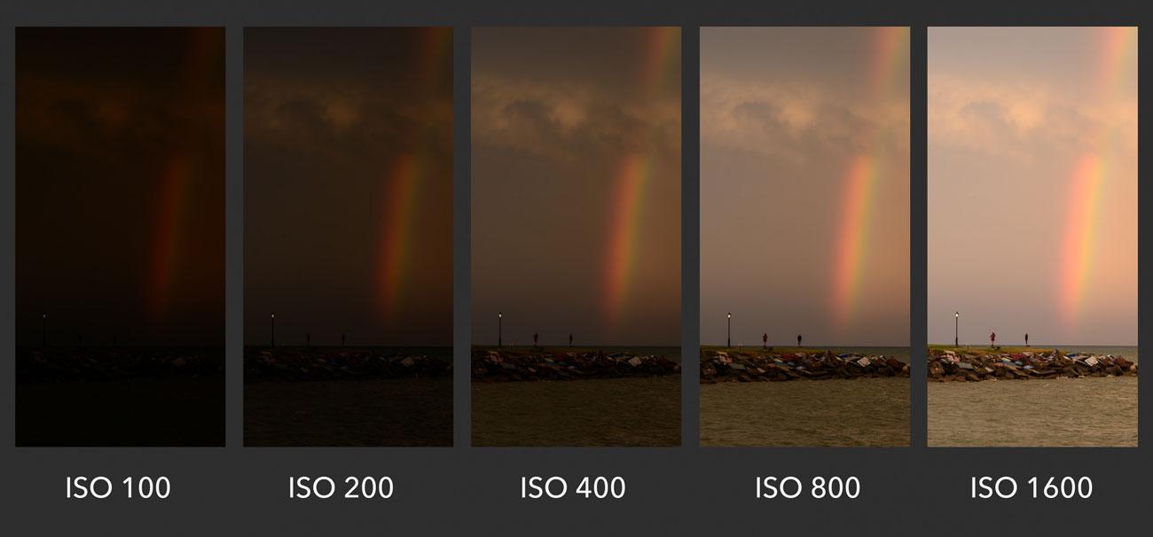 ایزو یا ISO در عکاسی چیست؟