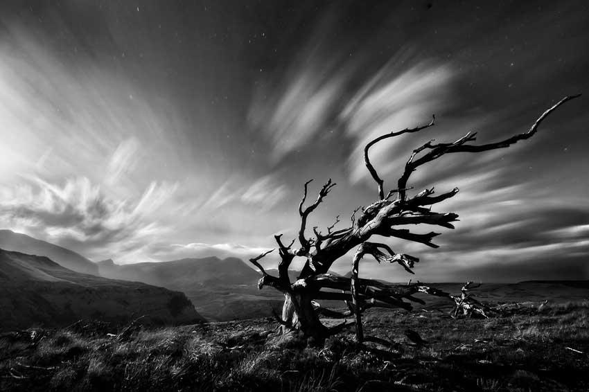 عکاسی در باد